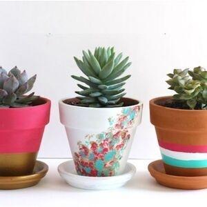 Painted Pots and Paper Pots