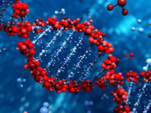 PacBio Long-Read Sequencing and Bioinformatics -- Enabling Discovery in the Life Sciences