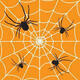 Pennsylvania Spiders; Facts, Fears and Fantasy
