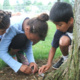 Summer Camp: Outdoor Explorer DiscoverE Ages 7-9 July 19-21