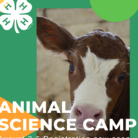 New Castle County 4-H Animal Science Day Camp