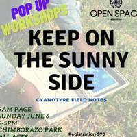 Sam Page's KEEP ON THE SUNNY SIDE Workshop at Chimborazo Park 06/06
