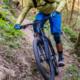Intro to Mountain Biking:  Bring Your Own Bike