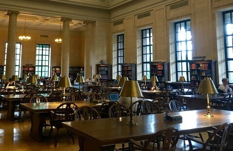 Library study space with long tables and bright windows