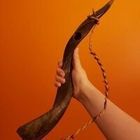 a person's arm. in their hand, they are holding a shofar.