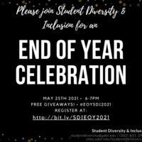 SDI End of Year Celebration