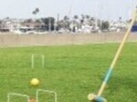 Croquet and Lawn Games
