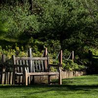 Nature Walk at the Botanic Gardens