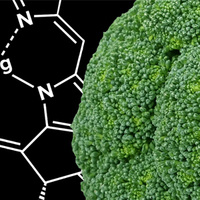 Broccoli in front of a scientific structure