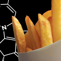 French Fries in front of a scientific structure