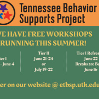 """Photo displays a graphic stating """"We have free workshops running this summer!"""" with dates of the workshop events, and includes the TBSP title.."""