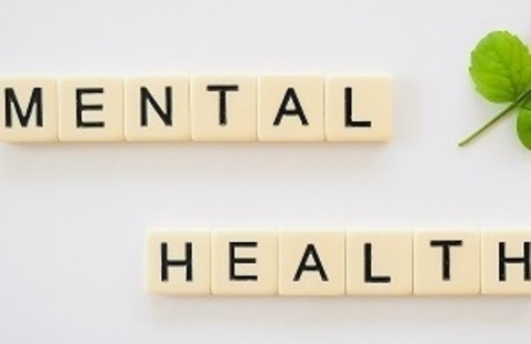 Supporting Student Mental Health Workshop Series
