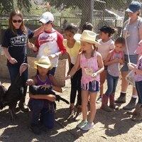 Gilchrist Farm Summer Camp