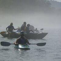 Early Morning Wildlife Float