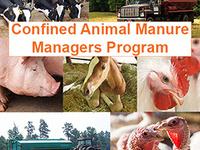 CAMM Initial Certification Training - Swine