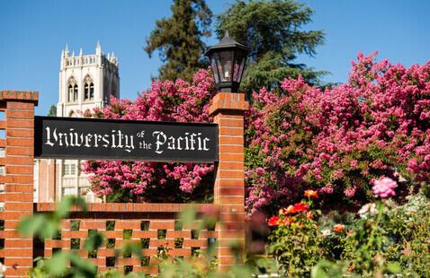 Associate Dean of Students Finalist (Sacramento & San Francisco) - Student Interview