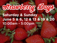 Strawberry Days at The Shoppes