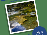 """Green background with an image of a stream. Reads: """"Eco-Explorers Stream Stroll July 21 6-7pm For ages 4+"""""""