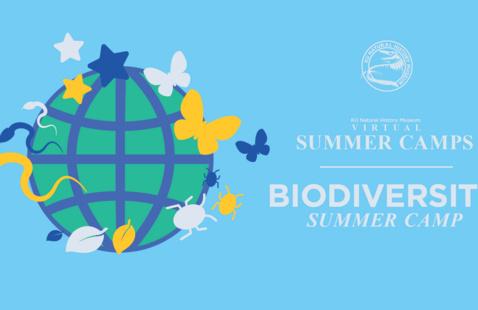 Biodiversity Camp: 'Ologies' Live Zoom Session