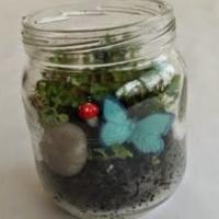 Get Crafty Together: Mini Terrariums