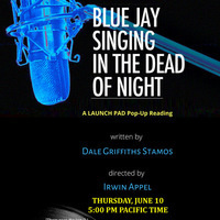Blue Jay Singing in the Dead of Night