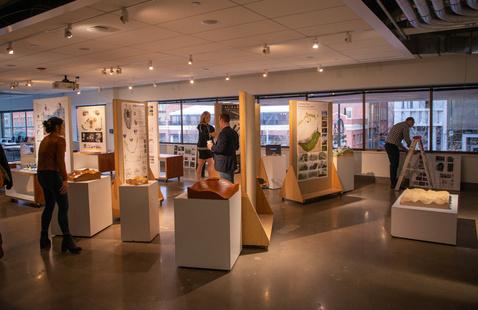 2nd Floor Exhibit: Daily Practice