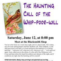 The Haunting Call of the Whip-poor-will