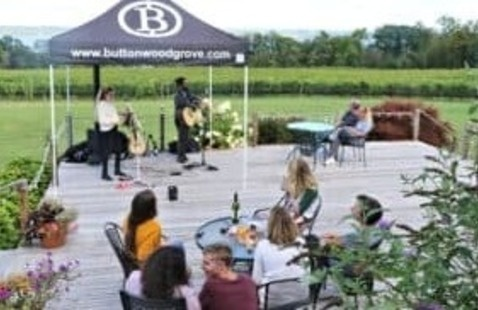 Friday Night Live Music at Buttonwood Grove Winery
