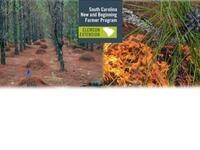 Pine trees with piles of pine straw and burning forest floor with the SCNBFP logo
