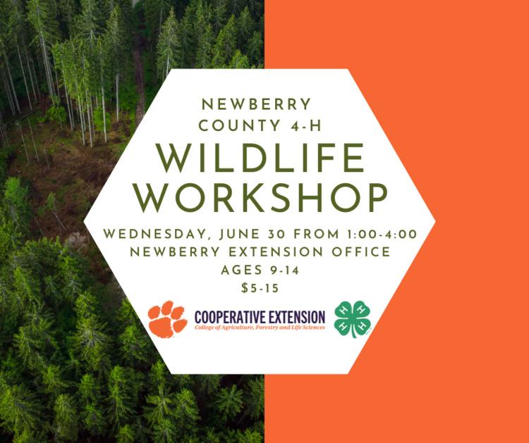 Newberry County 4-H Wildlife Workshop