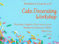 Newberry County 4-H Cake Decorating Workshop