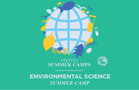 Environmental Science Camp: Water Quality with Aquatic Invertebrates Live Zoom