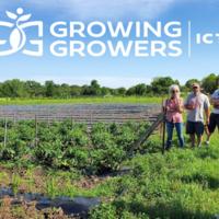Farmers Market Field Day at Kansas Grown! 21st and Ridge