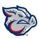Iron Pigs Baseball
