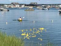 Shelter Island Duck Race