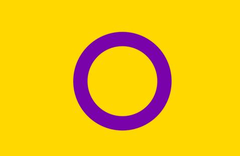 Intersex Day Celebration