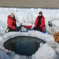 科学咖啡馆:来自冰天雪地的微小动植物