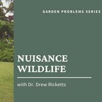Nuisance Wildlife Webinar