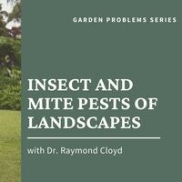 Insect and Mite Pests of Landscapes Webinar