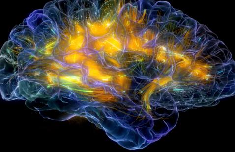 Image courtesy of UCSF Neuroscape