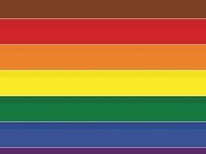 Baltimore County Dialogs on Race: Supporting the LGBTQIA+ Community