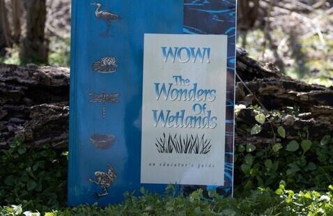 Wonders of Wetland Educator Workshop, Linton