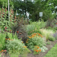 Cooke House Legacy Gardens