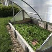 Extend the Growing Season with a Cold Frame Workshop via Zoom