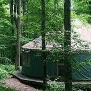 Yurt at the Beattie Reserve