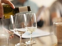 Evaluating Wines: The Flavor in Your Glass