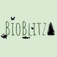 Self-Guided: Raccoon Creek State Park BioBlitz 2021