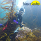 Untangling Giant Kelp:  How Do the Environment and Genetics Shape Giant Kelp Form and Structure?