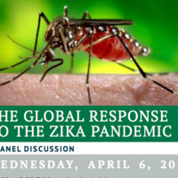 The Global Response to theZikaPandemic: A Panel Discussion