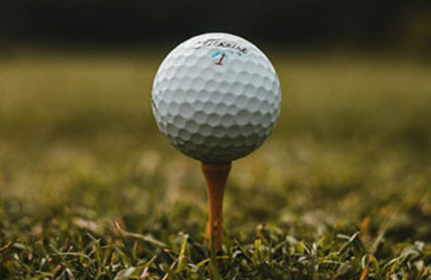 Edelman Gardner Ladies Golf Tournament